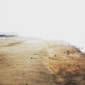 Beach Of San Francisco